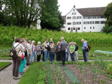 Limmat und Kloster 2016